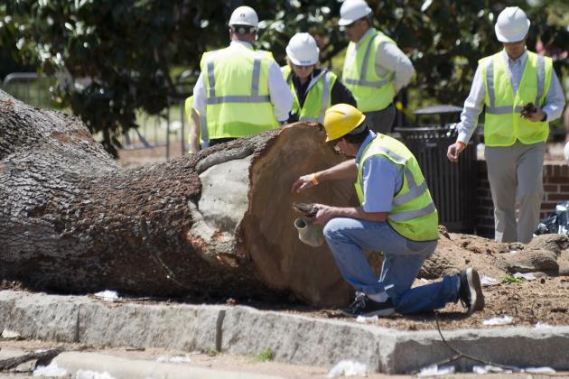 Lee County DA Seeking $1M for Poisoning of Toomer's Oaks