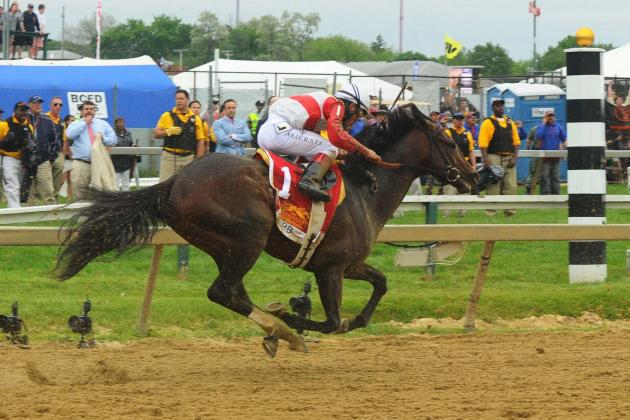 Belmont Stakes 2013 Best Horses To Bet In Final Triple