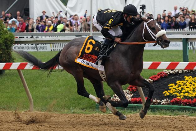 Belmont Stakes Predictions: Hyped Horses That Will Disappoint