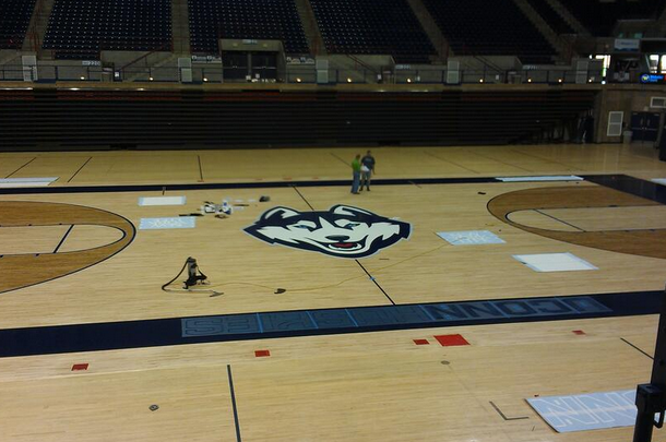 Here's a Photo of UConn's New Husky Logo at Gampel Pavilion