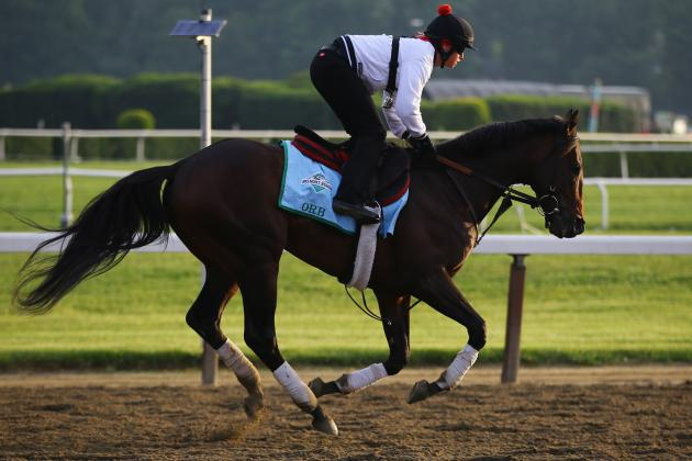 Belmont Stakes 2013 Lineup: Post Positions and Odds for Each Horse