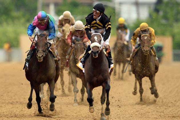 Belmont Stakes 2013 Field: Horses with Best Odds in Triple Crown's Last Leg