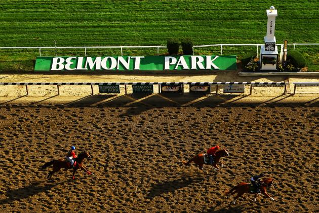 Belmont Stakes 2013 Lineup: Breaking Down This Year's Test of the Champion Field