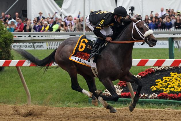 Belmont Stakes Odds: Highlighting Favorites to Win Triple Crown's Final Leg