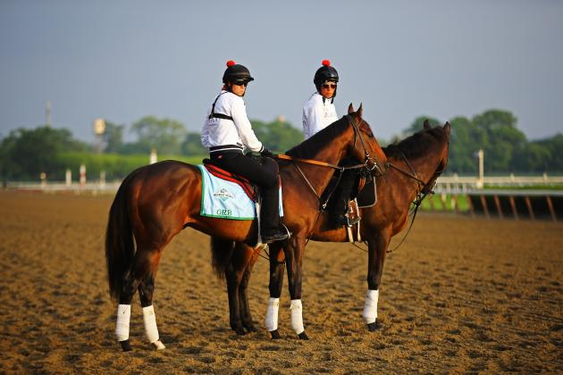 Belmont Stakes 2013 Contenders: Last-Minute Buzz Surrounding Top Horses
