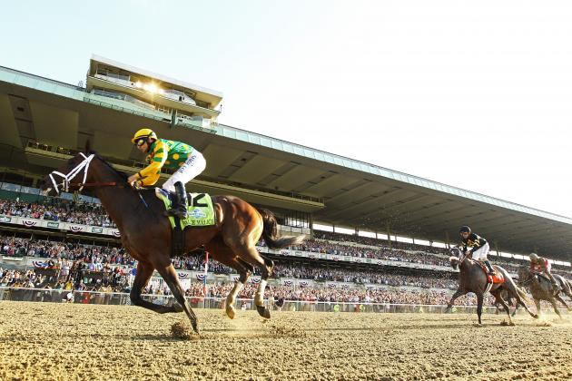 Belmont Stakes 2013 Results: Complete Standings for Entire Field
