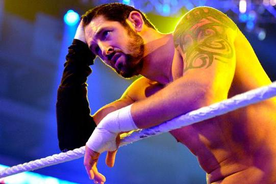 WWE Pushed to Punished, Edition 31: The Barren Barrage of Wade Barrett