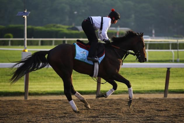 Belmont Stakes 2013 Payouts: Breaking Down How Favorites Fared in New York