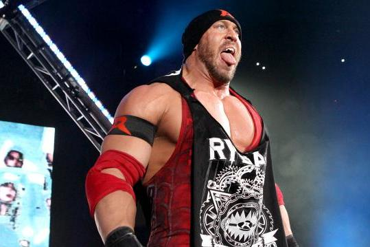 WWE: Ryback and Sheamus Is a Must-See Summertime Feud
