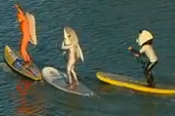 Guy in Shark Suit Almost Drowns in McCovey Cove Slideshow Video