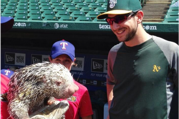 Twitter / Athletics: It's Wildlife Education Day ...