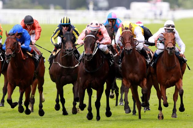 Diamond Jubilee Stakes 2013: Post Time, Odds and Predictions for Entire Field