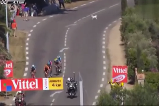 Tour de France 2013 Stage 2 Results: Winner, Leaderboard and Highlights