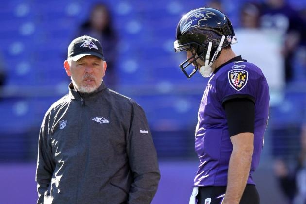 Cam Cameron on Joe Flacco's 'Great Mechanics'