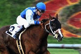 Racing at Hollywood Park with Marc Doche: Pace Key for Need You Now in Le Cle