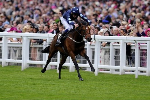 July Cup 2013: Horses to Watch in This Year's Anticipated Event