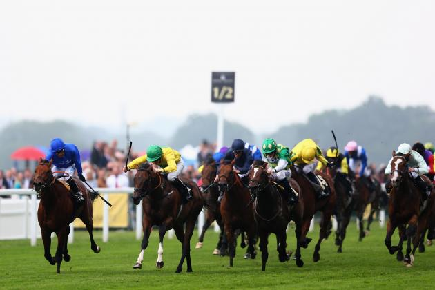 July Cup 2013: Last-Minute Predictions for Revered Horse Race