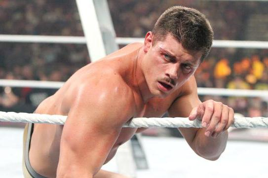 WWE MITB 2013: Cody Rhodes Should Be in Line for a Face Push