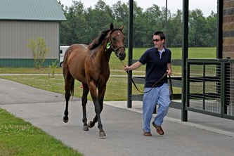 New Hope for Horses with Fibrotic Myopathy