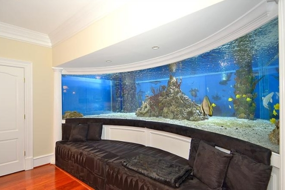 Gilbert Arenas Puts $3.5 Million Mansion on the Market, Shark Tanks Included