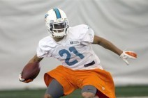 Brent Grimes off to Sharp Start at Dolphins' Training Camp
