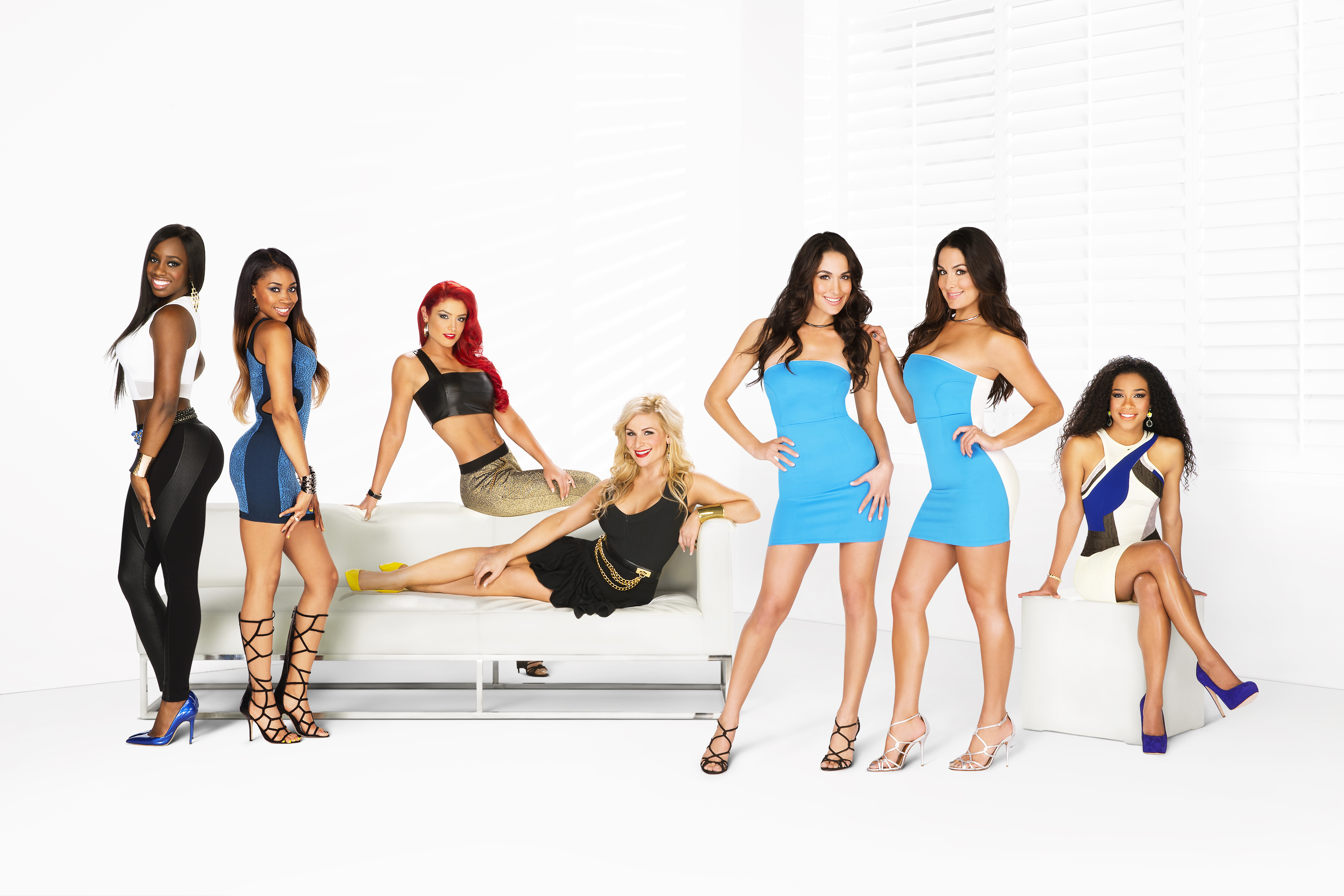 Don 39 t sleep on total divas why the new show may be a wwe - The diva series ...