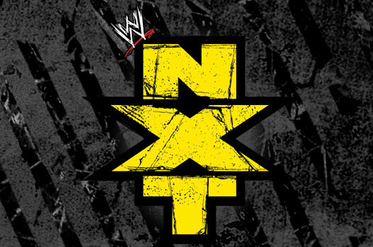 WWE NXT Results and Review  of the 7/25/13 Edition