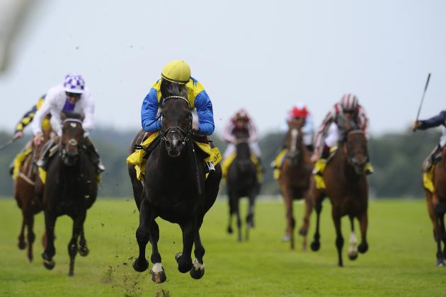 King George Stakes 2013: Horses That Were Most Impressive in Epic Race