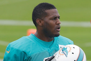 Miami Dolphins Mum on Mike Wallace's Status; Brian Hartline Hurting