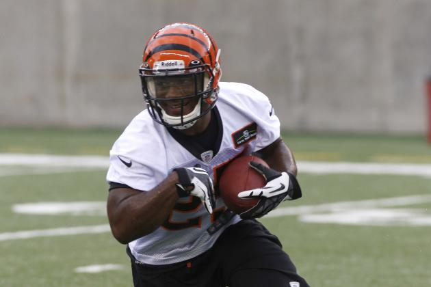 2013 Fantasy Football Running Back Rankings by Tier: Level Four