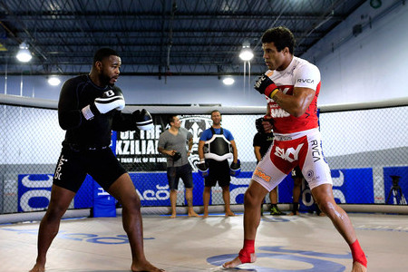 Rashad Evans Won't Fight Vitor or Any Other Teammate