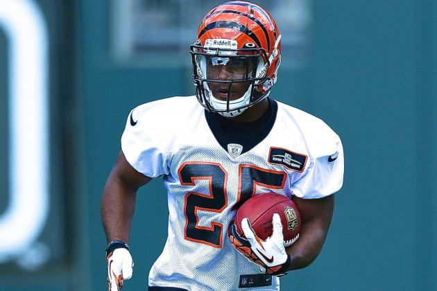 HBO 'Hard Knocks' 2013: Best Bengals Storylines and Moments of Episode 1