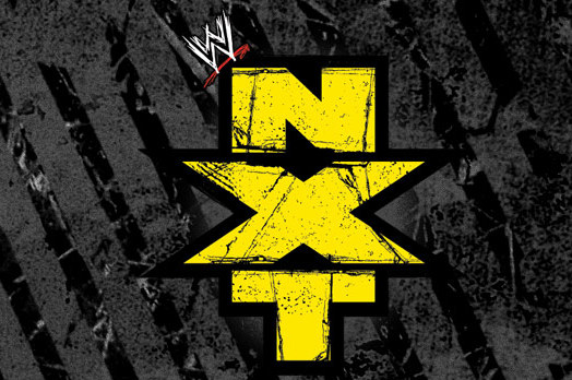 WWE NXT Results and Review of 8/8/13