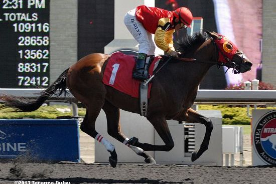 Breeders' Stakes 2013: Post Time, Post Positions, Contenders, Odds and Schedule