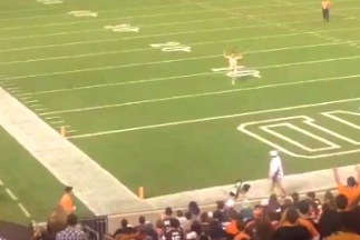 Streaking Fan Gets Leveled by Security