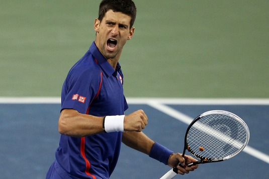 Djokovic Earns Top Seed at 2013 US Open