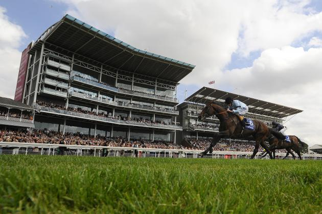 York Ebor Races 2013: Five Horses to Avoid on Day Two