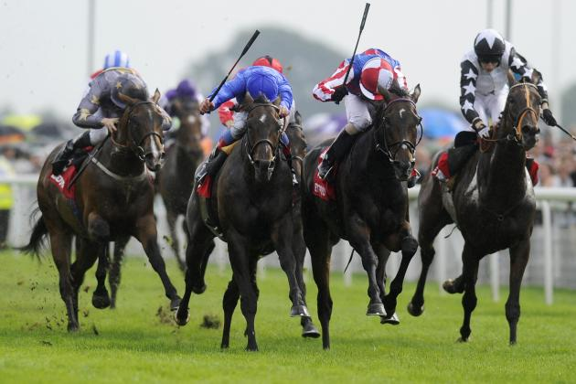 York Ebor Meeting 2013: Thursday Underdog Runners Promising Big Purse Payouts