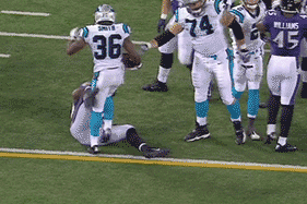 Panthers' RB Ejected for Kicking Ravens' Albert McClellan in the Junk
