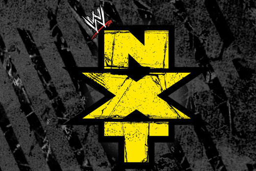WWE NXT 8/22/13: Results and Review