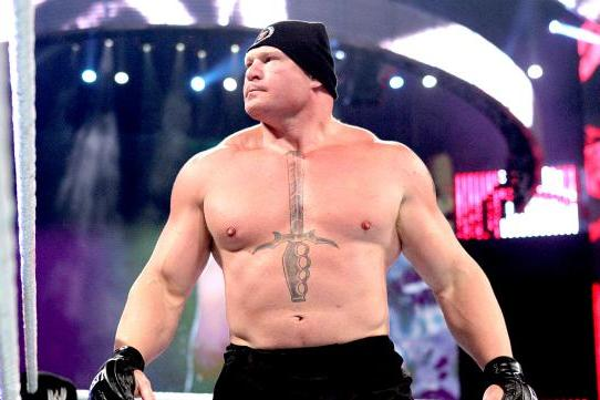 Report: WWE's Plans for Brock Lesnar; Punk vs. Lesnar II?
