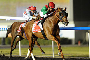 Dubai World Cup Set for March 29
