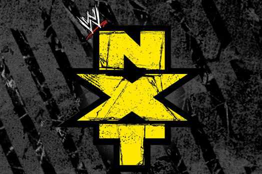 WWE NXT Results and Review of 8/29/13
