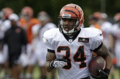 Report: Roland, Herron Among Bengals Cuts