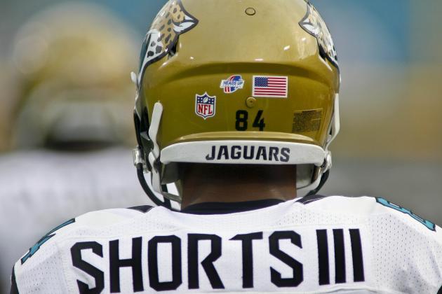 Jaguars Roster Breakdown