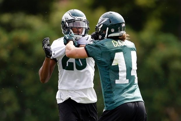 Riley Cooper and Cary Williams' Scuffle Proves Eagles Are a Team Divided