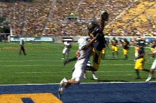 Cal WR Maurice Harris Hauls in Beautiful One-Handed TD Catch