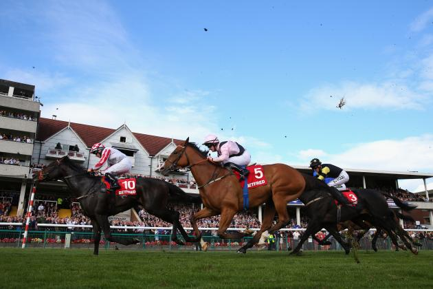 St Leger Meeting 2013: Predictions and Betting Odds for Day 1