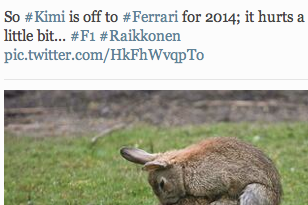 Lotus F1 Team Tweet Goodbye to Kimi Raikkonen with Photo of Rabbits Mating