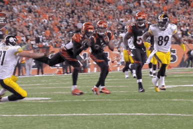 Bengals S Reggie Nelson Intercepts Ben Roethlisberger with a One-Handed Catch
